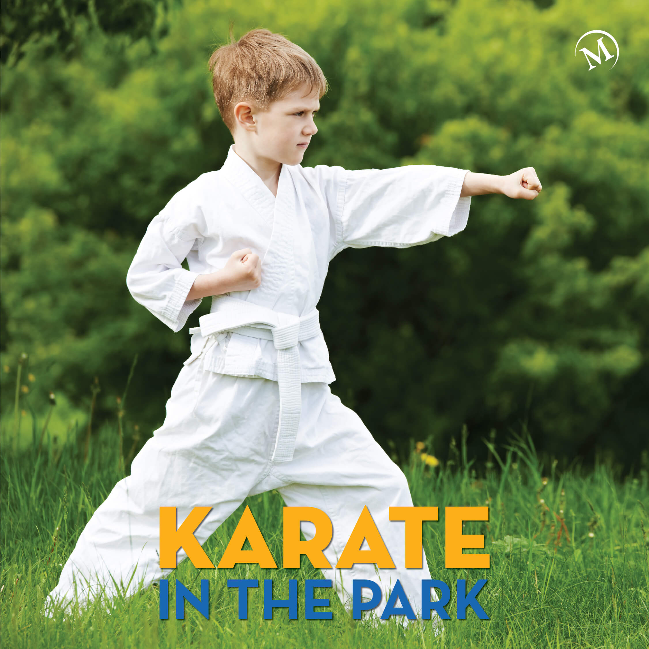 Karate in the Park Camp featured image