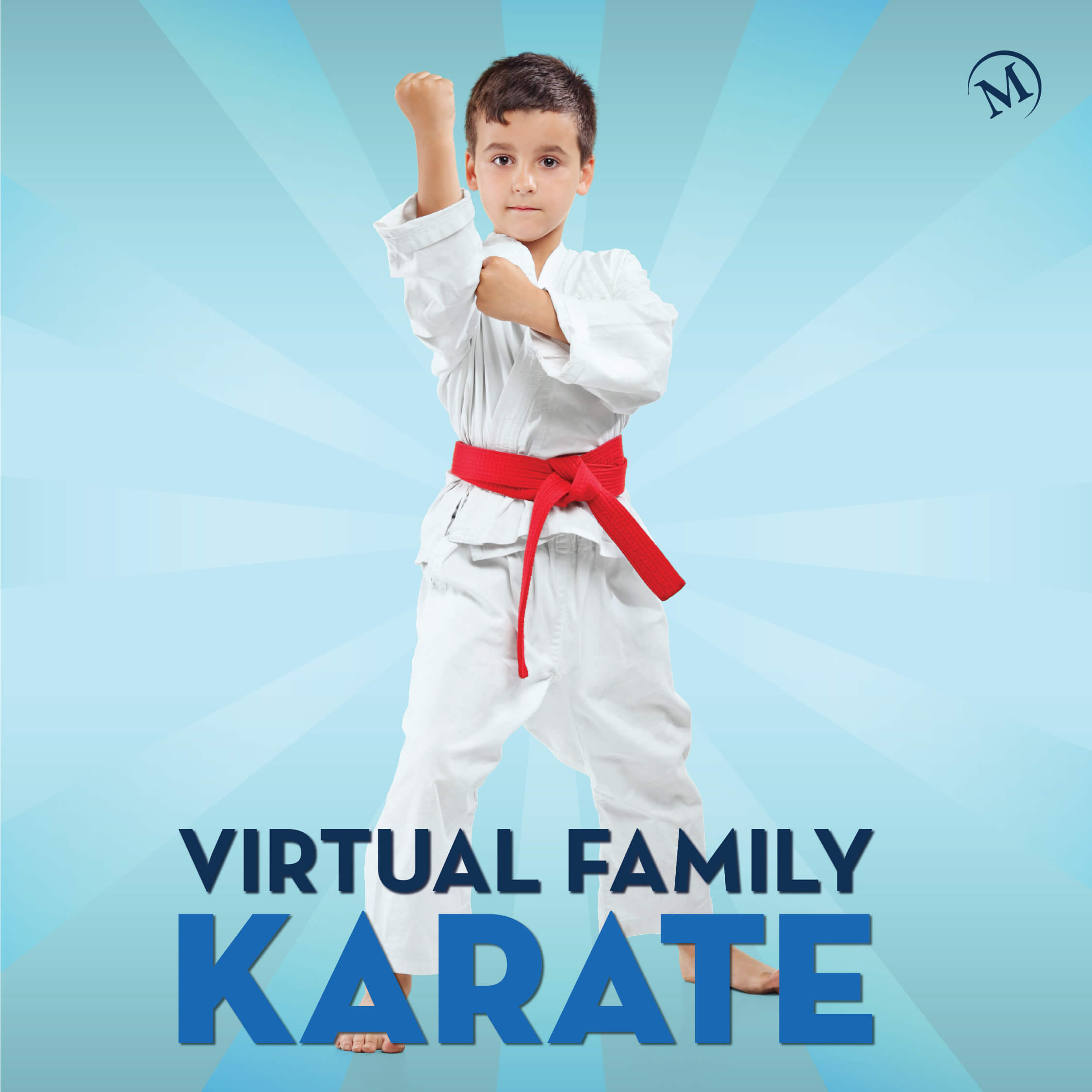 Virtual Family Karate Camp featured image